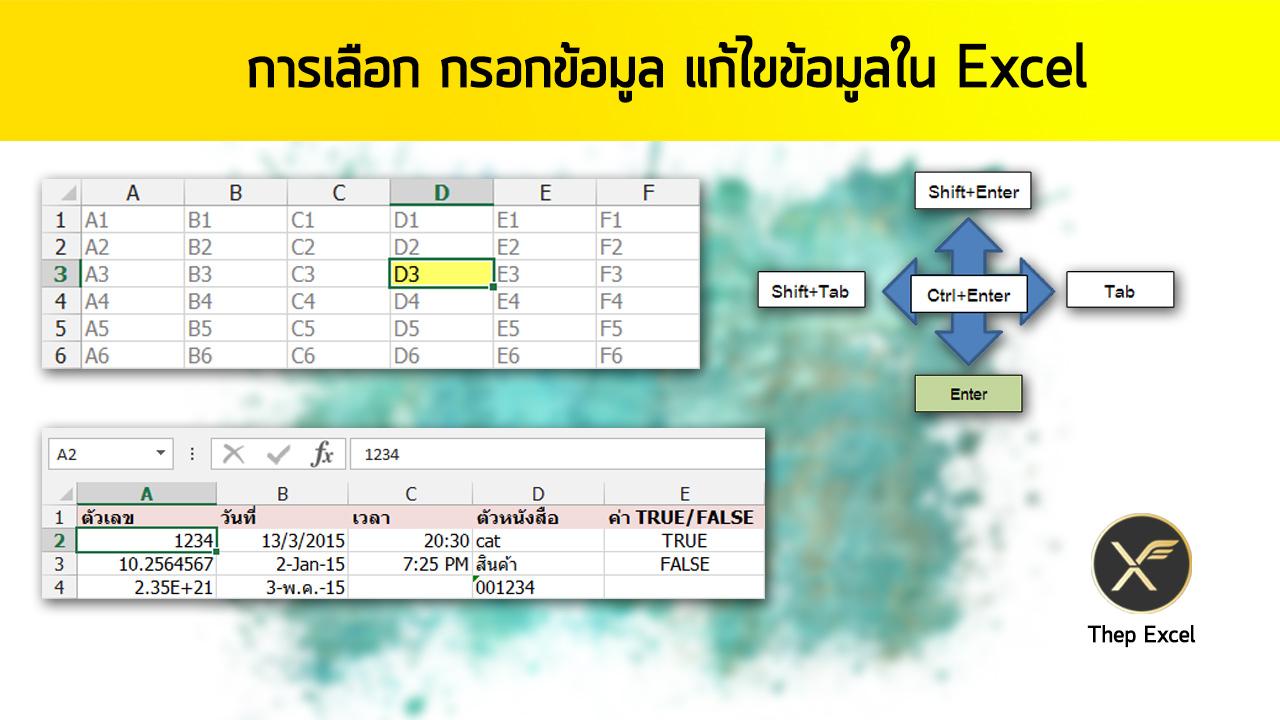 กรอกข้อมูล เลือกข้อมูล data entry excel
