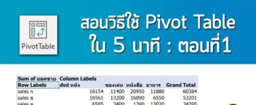 pivot table basic